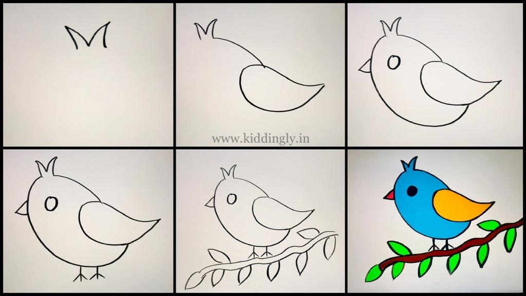 Drawing Tutorial - Birds Theme - WhatsApp Image 2019 09 19 at 3.03.09 PM 1 1024x576