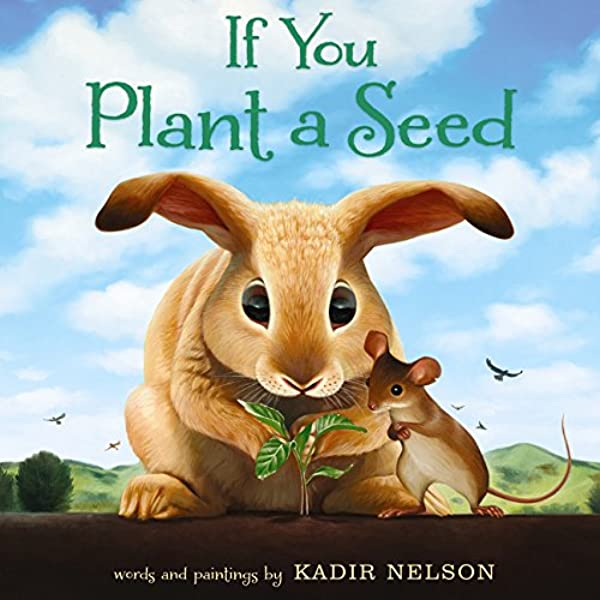 Kiddingly - If You Plant A Seed